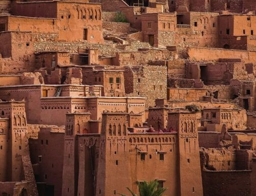 8D7N Nature & Flavors of Morocco