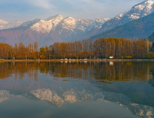 7D6N The Golden Triangle with Kashmir