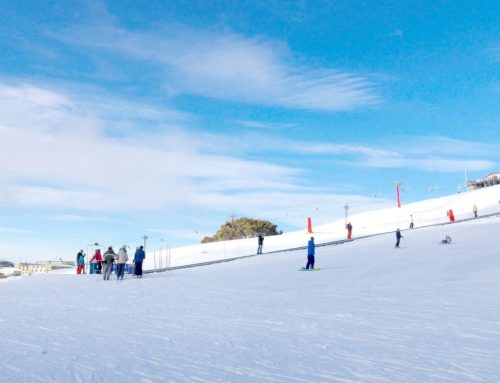 Mount Buller Snow Day Tour