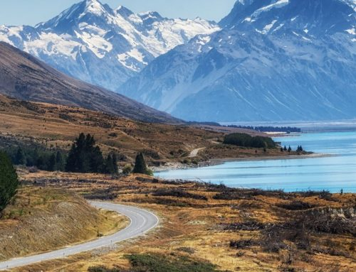Mount Cook Day Tour
