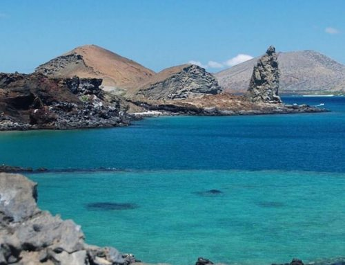 10D6N The Amazing Galapagos
