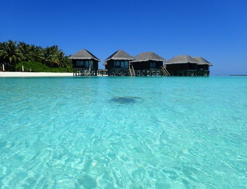 4D3N Maldives @ JW Marriott Maldives 5*