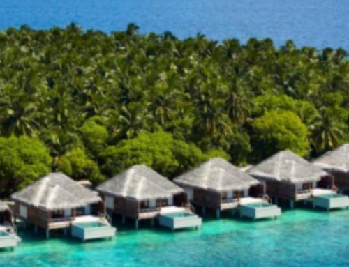 4D3N Maldives @ Dusit Thani Maldives 5*